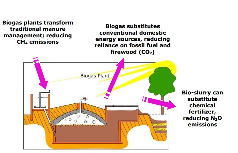 Biogas Plant Diagram Small Scale Biogas Plants