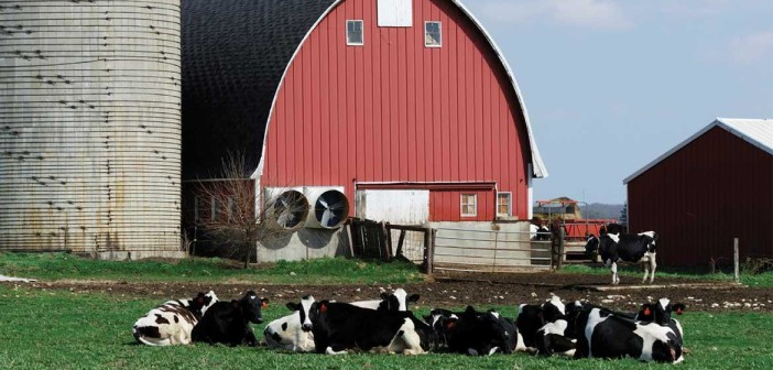 biogas-agriculture-industry
