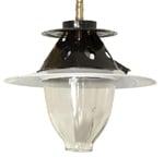 Biogas-lamp