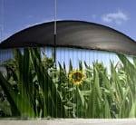 BITECO_BiogasPlantGermany