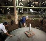 Biogas-Biru-Bali