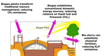 Gobar Gas Archives Build A Biogas Plant Home