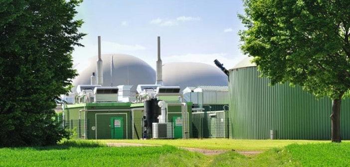 large scale biogas design